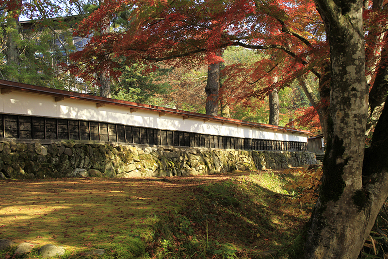 円蔵寺の境内にある紅葉スポット。いい写真が撮れます。